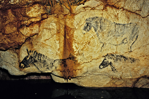 The Cave Art Paintings Of The Cosquer Cave