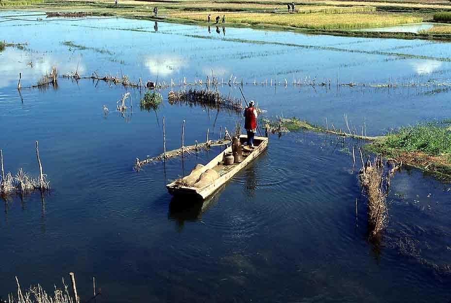 Abai fisherman checking his eel traps near shaping for Gross reservoir fishing